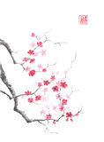 Japanese style sumi-e pink plum blossom ink painting. Hieroglyph featured means sincerity. Great for greeting cards or texture design Royalty Free Stock Photography