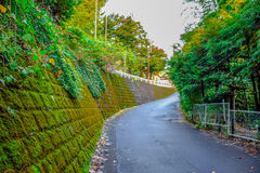 Japanese style of urban small street in Hakone, Japan Royalty Free Stock Photography