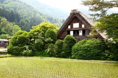 Japanese style. Wood nature green farm royalty free stock images