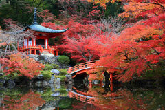 Japanese-Styled Pavilion Royalty Free Stock Photos