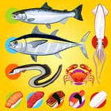 Japanese Sushi Fishes Sashimi Royalty Free Stock Images