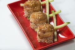 Japanese sushi rolls on a red plate. close view.  royalty free stock photography