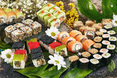 Japanese Sushi Set. Various Maki Sushi Roll and Nigiri Sushi. Japanese Cuisine and Natural Flower Concept Royalty Free Stock Images
