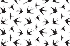 Japanese swallow pattern Stock Images