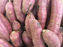 Japanese sweet potato Royalty Free Stock Image