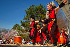 A Japanese Taiko Drum and Dance Performance Stock Image