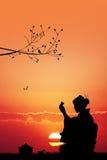 Japanese tea ceremony at sunset Stock Image