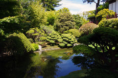 Japanese tea garden. In SF stock photography