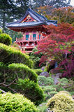 Japanese Tea Garden. The Japanese Tea Garden in the Golden Gate Park, San Francisco Royalty Free Stock Images