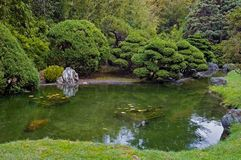 Free Japanese Tea Garden Stock Photography - 4577152