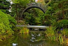 Free Japanese Tea Garden Stock Image - 4577171