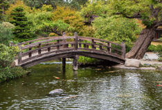Japanese Tea Garden Bridge and Pond Royalty Free Stock Photos
