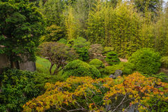 Japanese Tea Garden in The Golden Gate Park, San-Francisco Stock Images