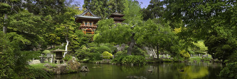 Japanese Tea Garden Panoramic. Japanese Tea Garden located in San Francisco Stock Photo