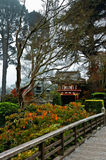 The Japanese Tea Garden in San Francisco Stock Photos