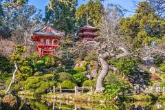 Japanese Tea Garden. In San Francisco stock images