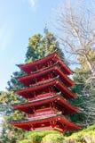 Japanese Tea Garden. In San Francisco royalty free stock photos