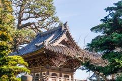 Japanese Tea Garden. In San Francisco royalty free stock photography