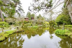 Japanese Tea Garden, San Francisco. The Japanese Tea Garden in Golden Gate Park in San Francisco, California, United States of America. A view of the native Stock Photos