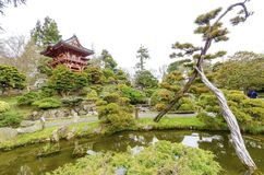 Japanese Tea Garden, San Francisco Stock Images