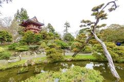 Japanese Tea Garden, San Francisco Stock Images