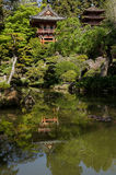 Japanese Tea House with Bonsai Gardens Royalty Free Stock Image