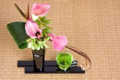 Japanese tea and ikebana Stock Images