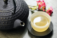 Japanese teapot and cup of green tea Stock Photography