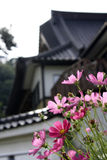 Japanese Temple. A temple in rural Japan (Northern Honshu), with foreground pink flowers Stock Photo