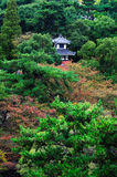 Japanese Temple. In the forest stock photo