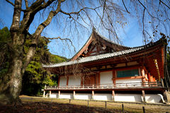 japanese temple Royaltyfri Foto