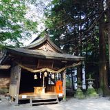 japanese temple Royaltyfria Bilder