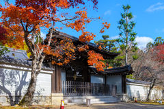 Japanese temple in autumn Stock Image
