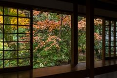 Japanese temple in autumn season. Beautiful landscape at outdoor Stock Photography