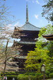 Japanese temple with Cherry blossom Royalty Free Stock Photos