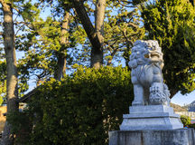 Japanese Temple Dog Royalty Free Stock Photos