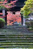 Japanese temple entrance. Closeup of a Japanese temple entrance with fall foliage Royalty Free Stock Photo