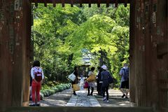 Japanese Temple Entrance. This photo of a Japanese Temple Gate was taken in Kamakura, Japan on a sunny day in May 2014 with a Canon 6D Stock Photo