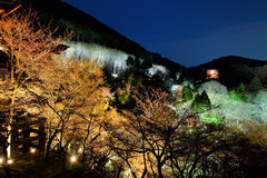 Japanese temple at night Royalty Free Stock Photography