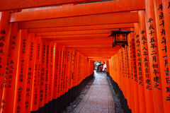 Japanese temple path Royalty Free Stock Image