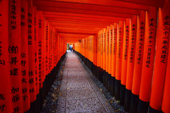 Japanese temple path Stock Image