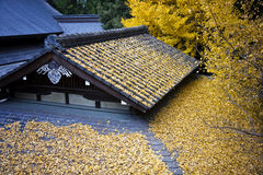 Japanese temple roof covered by leafs Stock Photos