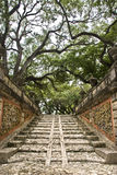 Japanese Temple Stairway. An ancient Japanese temple stairway into the forest stock photography