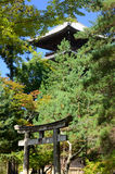 Japanese temple's gate and pagoda, Kyoto Japan. Stock Photos
