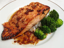 Japanese Teriyaki Salmon Royalty Free Stock Image