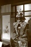 Japanese theme Royalty Free Stock Image