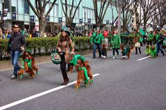Japanese with there Irish setters for St Patrick's day celebrations 2015 Stock Photos