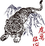 Japanese tiger. I drew a Nipponian tiger Royalty Free Stock Image