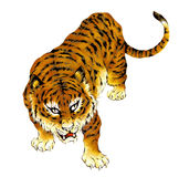 Japanese tiger. I painted a Japanese tiger in a freehand drawing Royalty Free Stock Photography