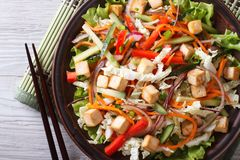 Japanese tofu salad with fresh vegetables horizontal top view Royalty Free Stock Image